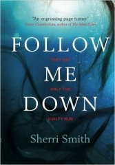 Follow me Down - Sherri Smith