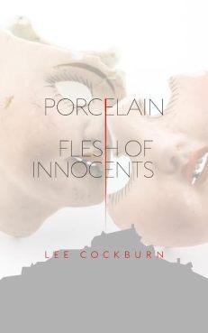 Porcelain book cover.jpg