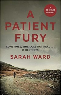 A Patient Fury - Sarah Ward.jpg