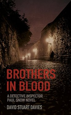 Brother in Blood - David Stuart Davis