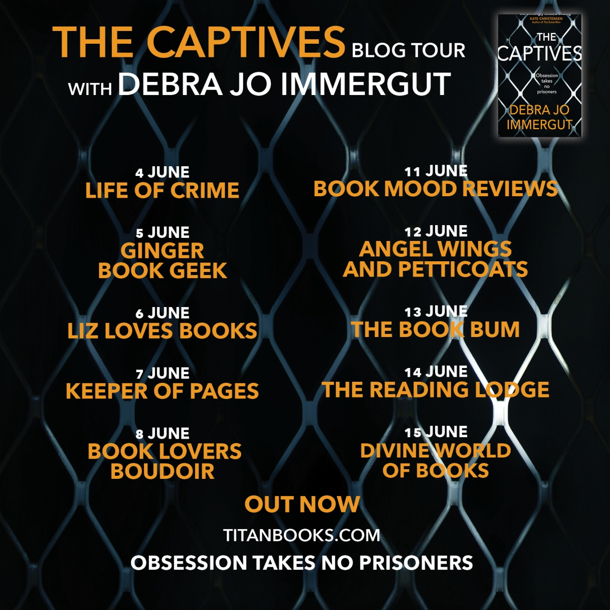 Blog Tour | Book Extract: The Captives by Debra Jo Immergut