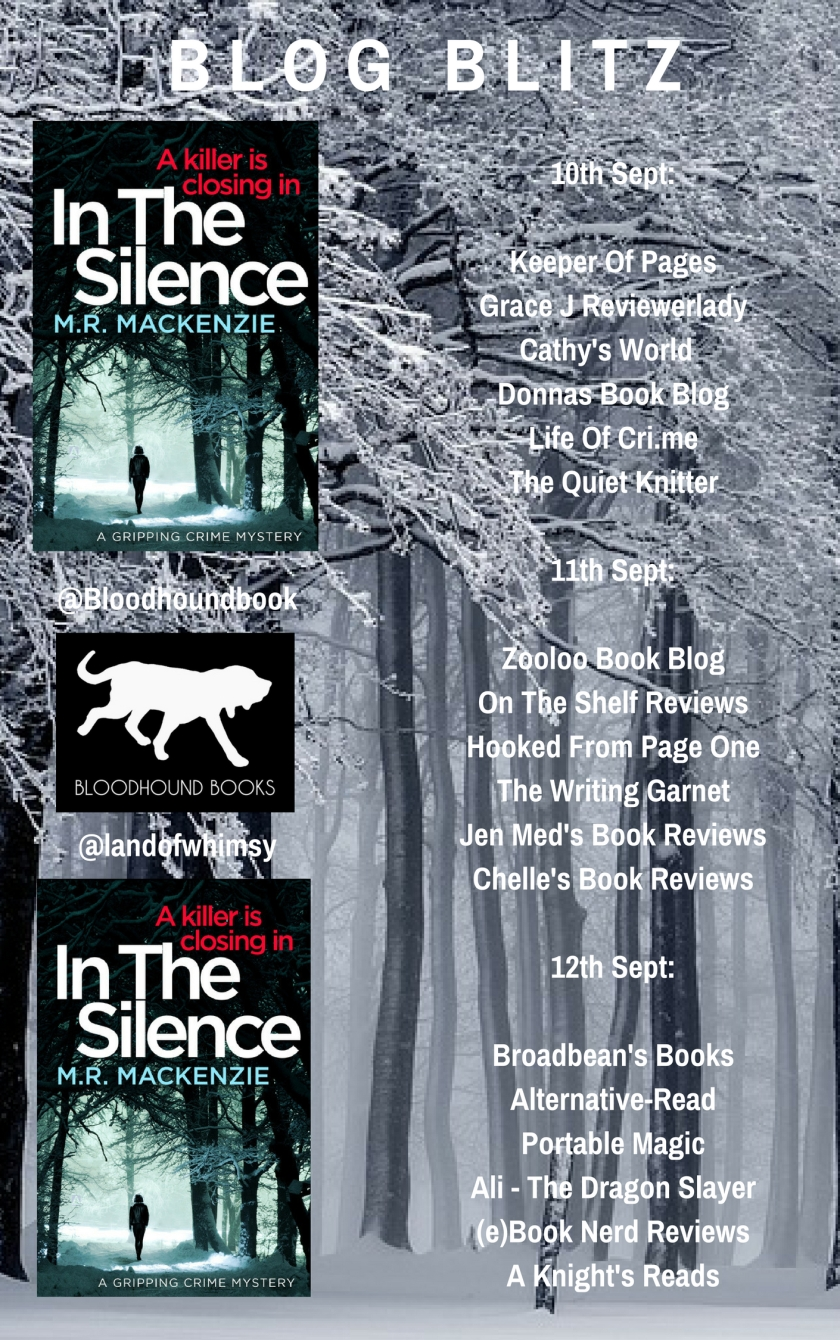 In The Silence banner
